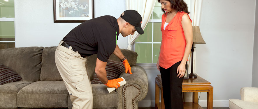 Lincolnton, NC carpet upholstery cleaning